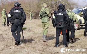 РИА-Новости: При ликвидации террористов в Чечне были ранены пять спецназовцев МВД