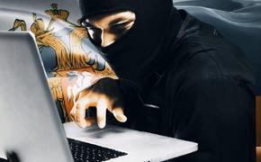 В России стало меньше убийств, но резко выросло число киберпреступлений