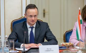 Глава МИД Венгрии объяснил, как резолюция ЕП из-за ареста Навального отразится на отношениях с РФ