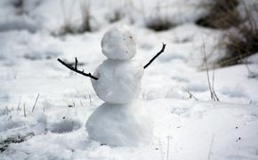 Синоптик Киктев не исключает 30-градусных морозов в Московском регионе в феврале