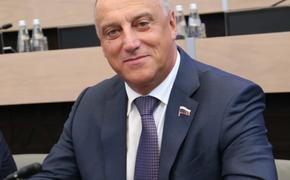 Сопчук заявил, что занимался бизнесом до избрания в Госдуму