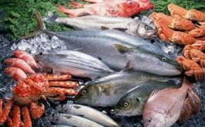 На экспорте рыбы Россия заработала 2,8 млрд долларов