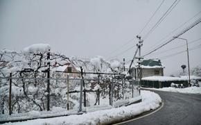 Энергетики восстановили электроснабжение почти 8 тысяч жителей сочинских поселков