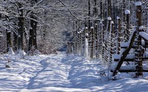 СК РФ напомнил правила безопасности нахождения на улице в сильный мороз