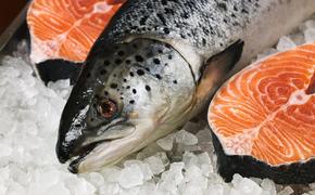 За лососями следят российские беспилотники