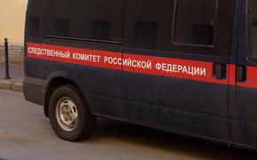 Тело новорожденного обнаружили в выгребной яме в Новгородской области