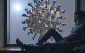 Эпидемиолог Александр Горелов дал прогноз по ситуации с коронавирусом COVID-19 в России весной