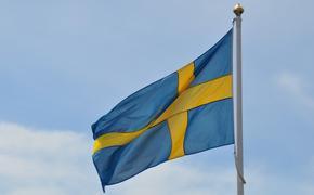 Шведский депутат Вихель обвинил Россию и Китай в желании раздробить ЕС