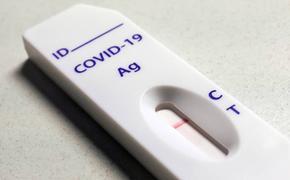 В России выявили более 11 тысяч новых случаев заражения COVID-19