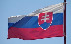 В Словакии не хватает мест в реанимации. Больных коронавирусом направляют в ФРГ и Польшу