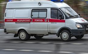 В России за сутки скончались 379 пациентов с коронавирусом