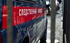 Тело новорождённого мальчика нашли на мусороперерабатывающем заводе под Орлом