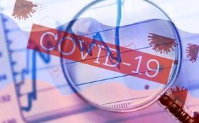 Врач Александр Островский рассказал о сроках достижения коллективного иммунитета к COVID-19 в России