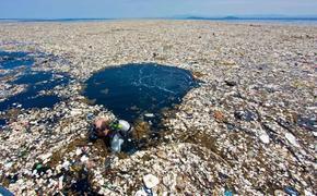 Россия в ближайшее время может развернуть борьбу с пластиковыми отходами
