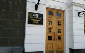 Семь депутатов вышли из ЛДПР в Хабаровской гордуме