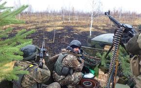 Экс-разведчик Кедми назвал три возможных сценария войны в Донбассе, каждый из которых приведет к поражению Украины