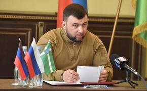 Глава ДНР Пушилин сообщил, что гибель ребенка в поселке Александровское в Донбассе квалифицировали как теракт