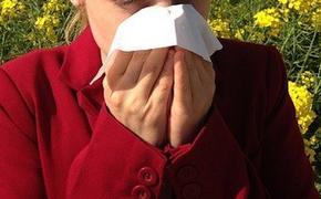 Врач-иммунолог Болибок рассказал о способах лечения аллергии