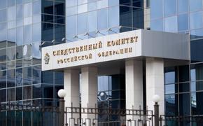 Глава СКР Александр Бастрыкин поручил проверить возможное мошенничество с квартирой Людмилы Лядовой