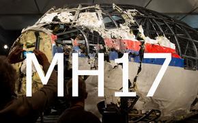Корреспондент «Комсомольской правды»: Боинг над Донбассом был сбит украинским истребителем Су