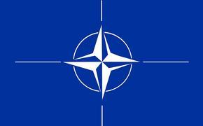 НАТО начнет вывод войск из Афганистана до 1 мая