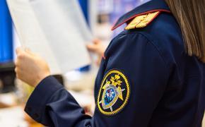 За период вооружённого противостояния в Донбассе СК России возбудил более 430 уголовных дел