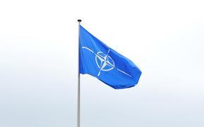 Киевский политолог Олещук объяснил, почему НАТО не принимает Украину