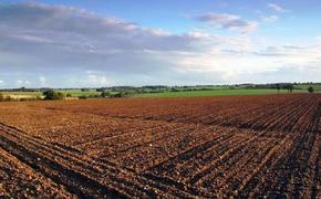 В краевой закон о плодородии почв внесены новые поправки