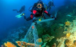 Видео: 633 дайвера во Флориде установили новый мировой рекорд по самой массовой подводной уборке мусора