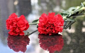 Прощание с Владимиром Качаном пройдет 12 мая в «Школе современной пьесы»