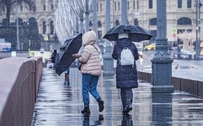 Синоптик Тишковец предупредил жителей Подмосковья о дожде с мокрым снегом в День Победы