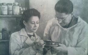 Ермольева:  та, что спасла тысячи безнадёжных раненых во время Второй Мировой
