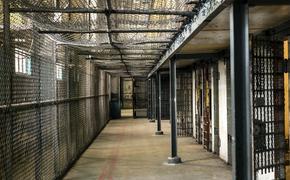 Актер из фильма «Фантастические твари» сел в тюрьму за преступление интимного характера