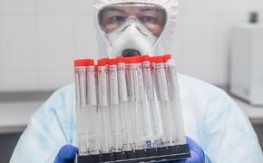 Глава ВОЗ заявил о возможном росте смертности во второй год пандемии