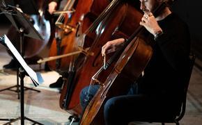 Моцарт прозвучит в зале Рафаэля лондонского музея Виктории и Альберта