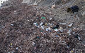 В Крыму создадут единое государственное предприятие по переработке мусора