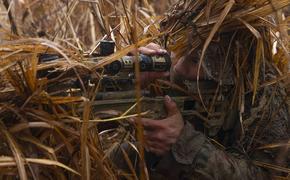 В Донбассе военные ВСУ открыли снайперский огонь по позициям батальона ЛНР «Призрак» и ранили трех бойцов