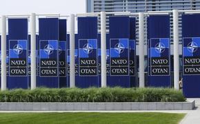 НАТО призвала Россию вернуться в Договор по открытому небу