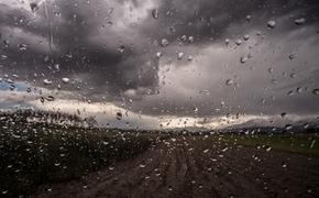 После африканской жары в Москву придут дожди и ураганы