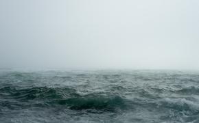 Французы об инциденте с приближением британского эсминца Defender к Крыму: «В следующий раз топите судно без предупреждения»