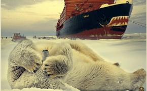 На экспансию человека Арктика ответит катастрофой