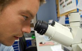 Американские ученые предупредили о появлении 22 мутаций коронавируса в ближайшие четыре месяца