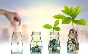 Кредиты по льготной ставке выдают предпринимателям в Приморье