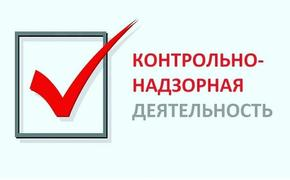 В России создаётся единая система контрольно-надзорной деятельности