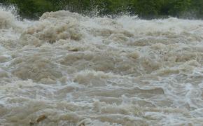 Телеканал NDTV сообщил об увеличении числа погибших из-за ливней и оползней в Индии до 138