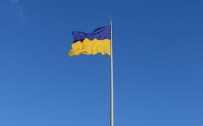 ТАСС: компания Wildberries продолжает работать на Украине, несмотря на санкции