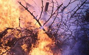 На Сардинии пришлось эвакуировать около 400 человек в связи с сильнейшими пожарами