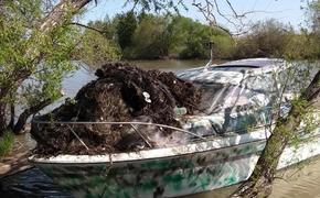 В Приморье борются за чистоту берегов озера Ханка