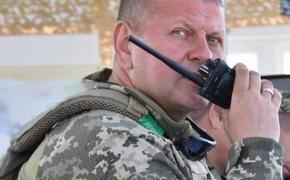 Зеленский ввёл в состав СНБО нового главнокомандующего ВCУ Валерия Залужного