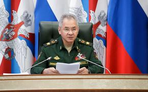 Шойгу заявил о готовности России помочь Таджикистану в случае угрозы безопасности
